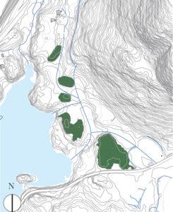 Illustrasjon: Kart over koller på Kongseplerød Hagegrend.